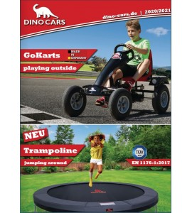 Dino Cars Prospekt